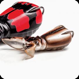 Supernato Beetle Baby