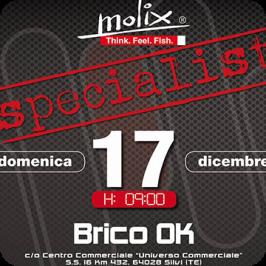 Molix Specialist Brico OK