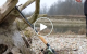 Molix Skirmjan EVO Pike Hunter _preview