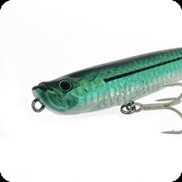 Molix WTD 90 & 120 Tarpon Series new color